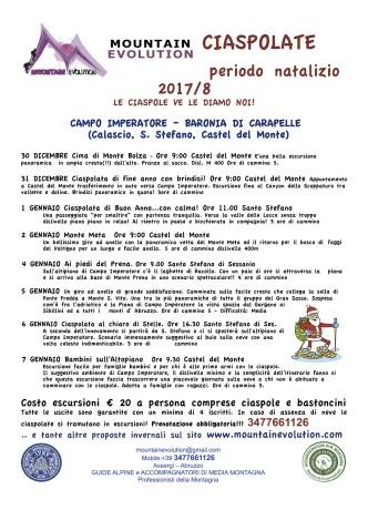NAT2017-8